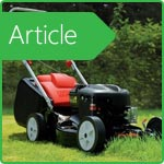 How to choose a lawn mower?